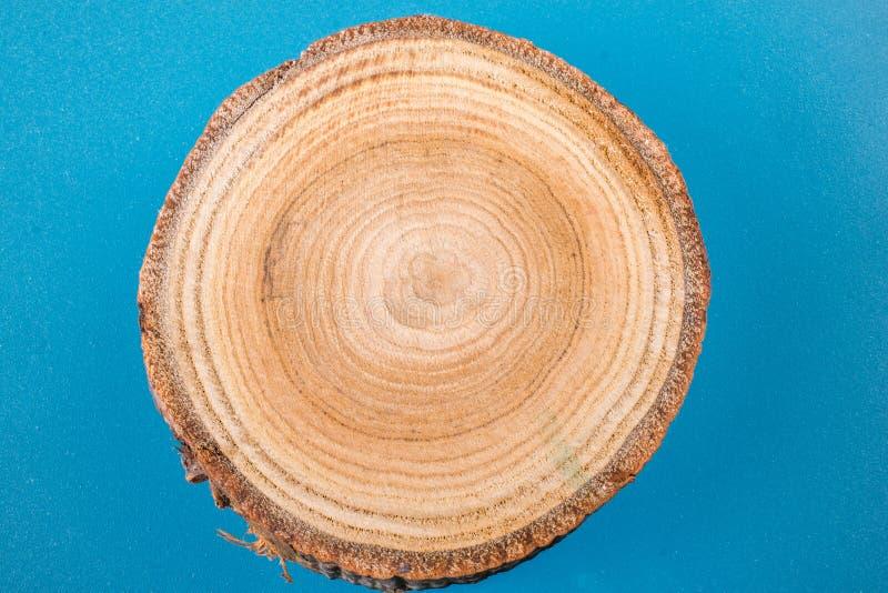 Stückchen geschnittene runde Form der hölzernen Anmeldung stockbild