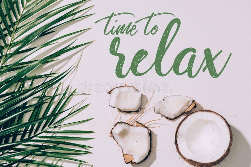 Stücke organische gesunde Kokosnuss und grüne Palmblätter auf Weiß mit Zeit zu lizenzfreie abbildung