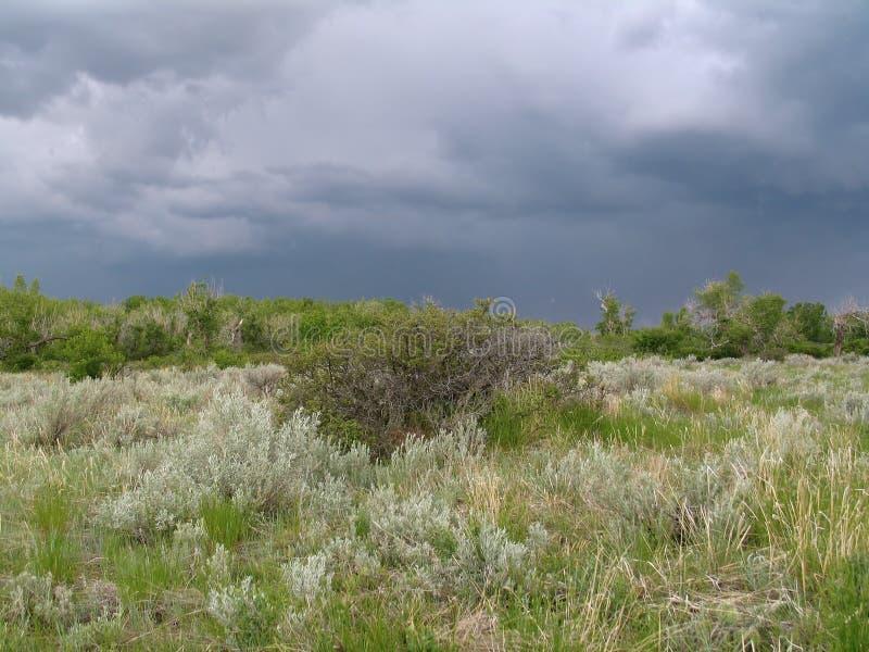 Stürmische Landschaft Lizenzfreie Stockbilder