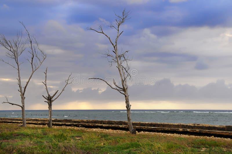 Stürmische Landschaftsküste lizenzfreie stockbilder