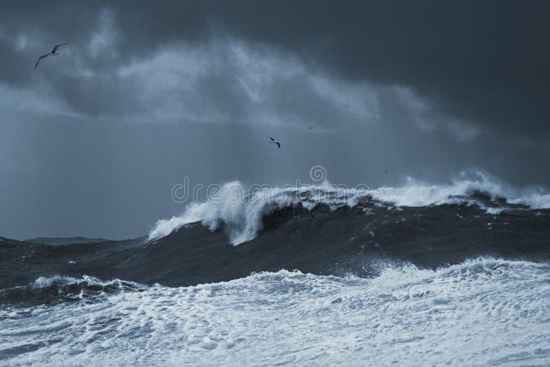 Stürmische Welle stockbild
