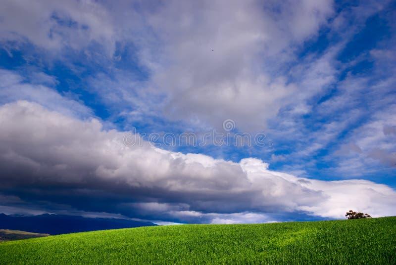 Stürmischer Himmel (horizontal lizenzfreie stockfotos