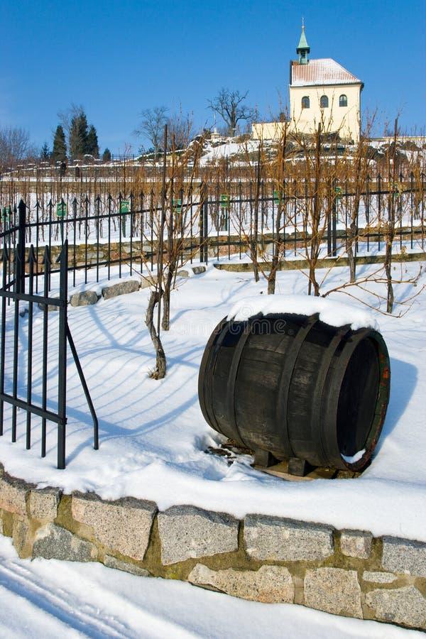 Download St克拉拉葡萄园, Troja,布拉格,捷克共和国 编辑类图片. 图片 包括有 纪念碑, 玻色子, 多雪 - 62529580