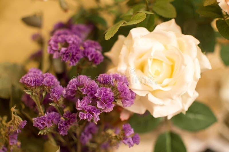 St华伦泰` s天惊人的白玫瑰和紫罗兰色花束植物学2月14日 免版税库存照片