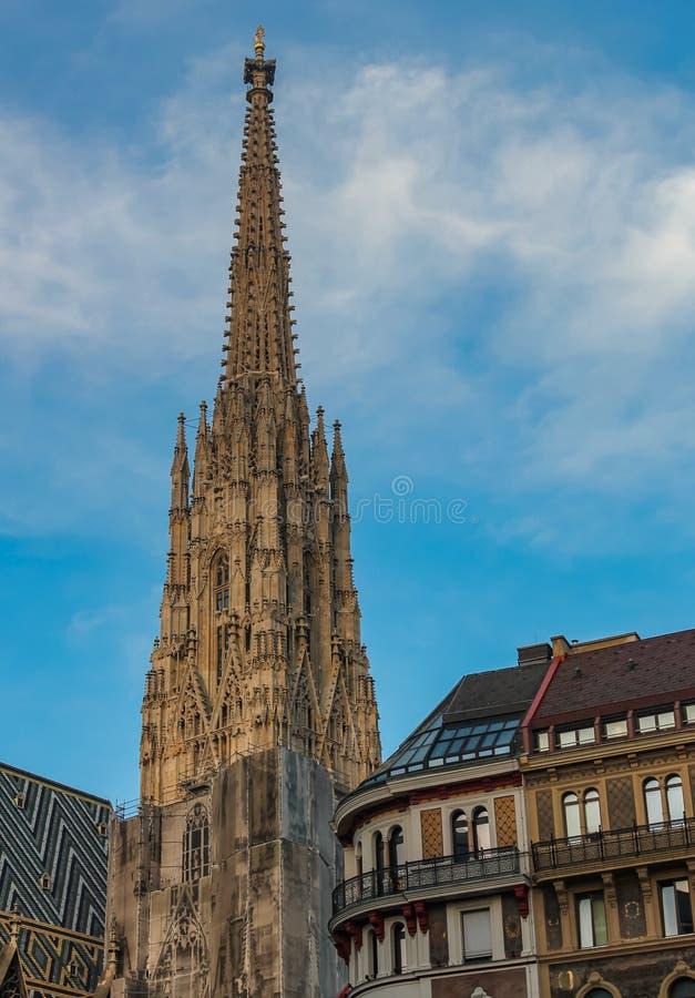 St斯蒂芬斯大教堂在维也纳是一个宽容大教堂、奥地利的国家标志和维也纳的标志  库存照片