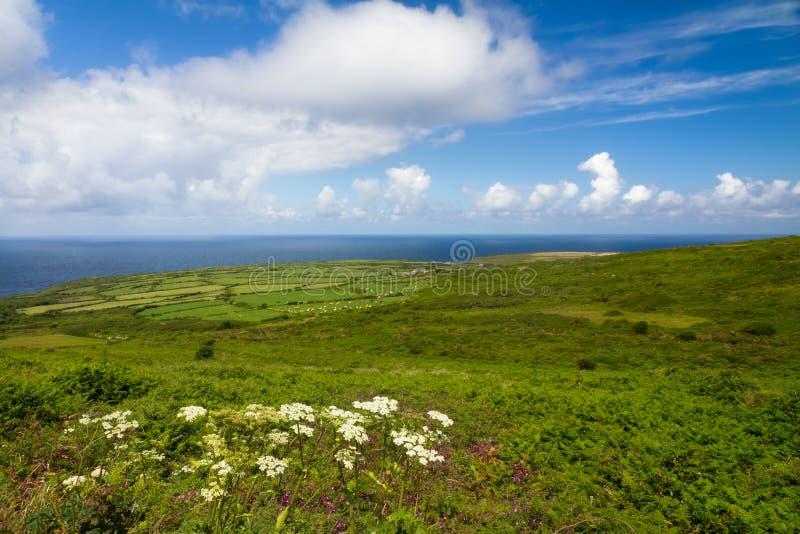 st земель ives конца свободного полета cornish стоковое изображение rf
