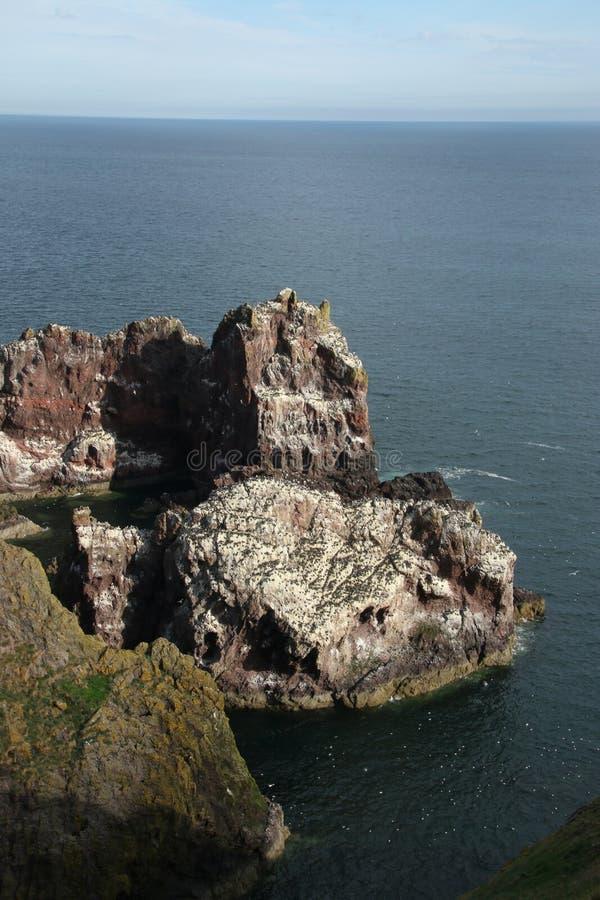 St Abbs, Northumberland y fronteras escocesas fotos de archivo libres de regalías