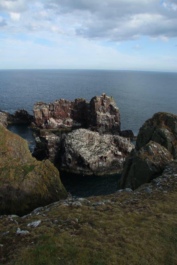 St Abbs, Northumberland y fronteras escocesas imagen de archivo libre de regalías