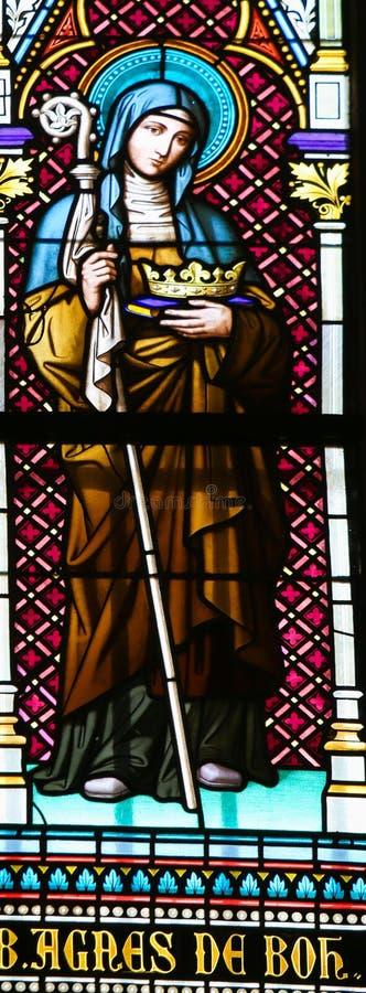 St. Agnes von Böhmen lizenzfreie stockbilder