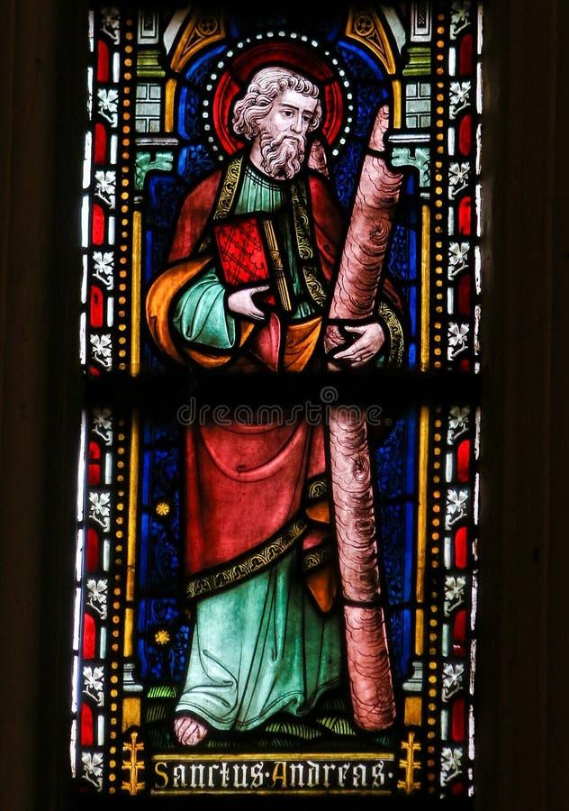 St Andrew - vetro macchiato nella cattedrale di Sint Truiden fotografia stock libera da diritti