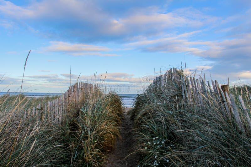 St Andrews Dunes stock photo