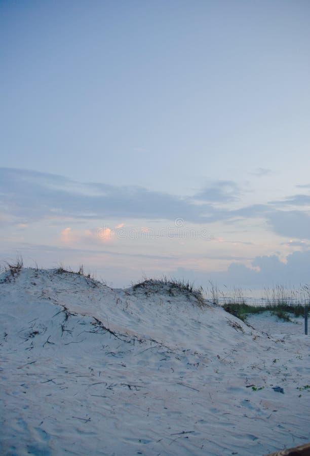 St Augustine Beach Dune royaltyfri bild