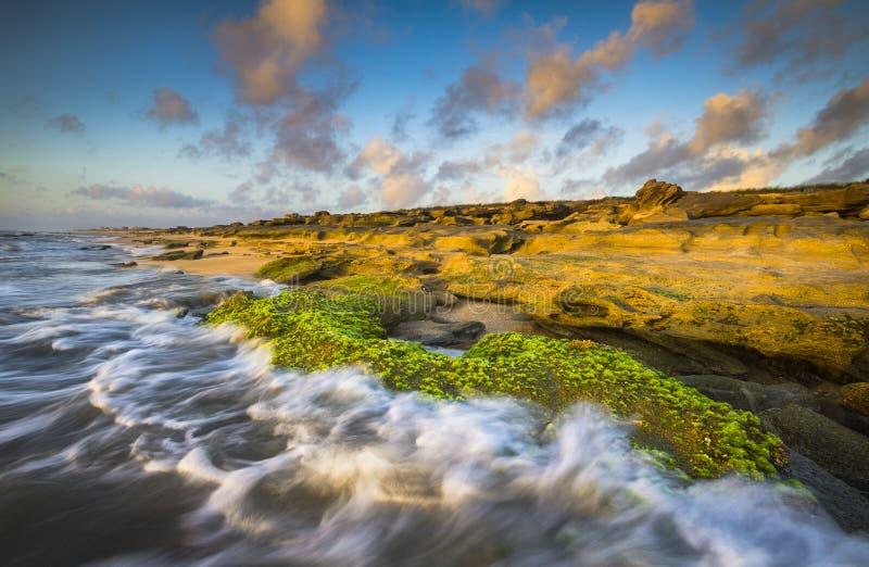 St Augustine FL échoue Washington Oaks Park Coquina Beach image libre de droits