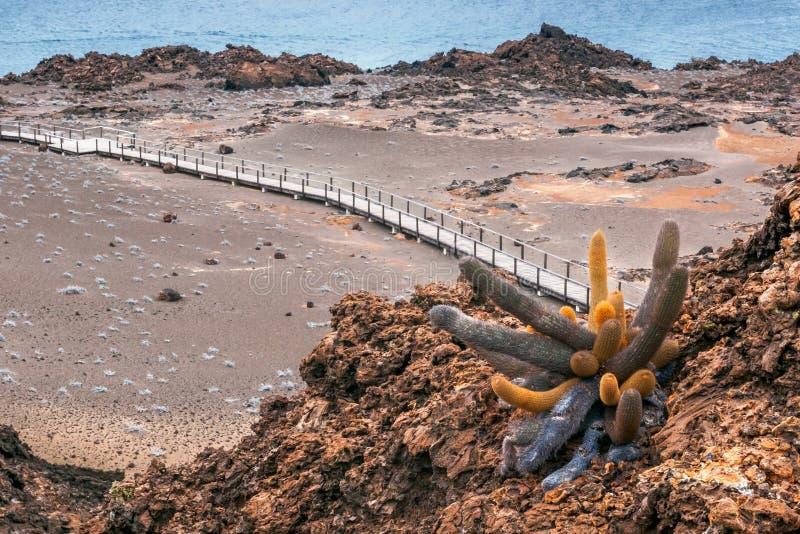 St Bartolome, Galapagos, Ecuador dell'isola di vulcano immagini stock