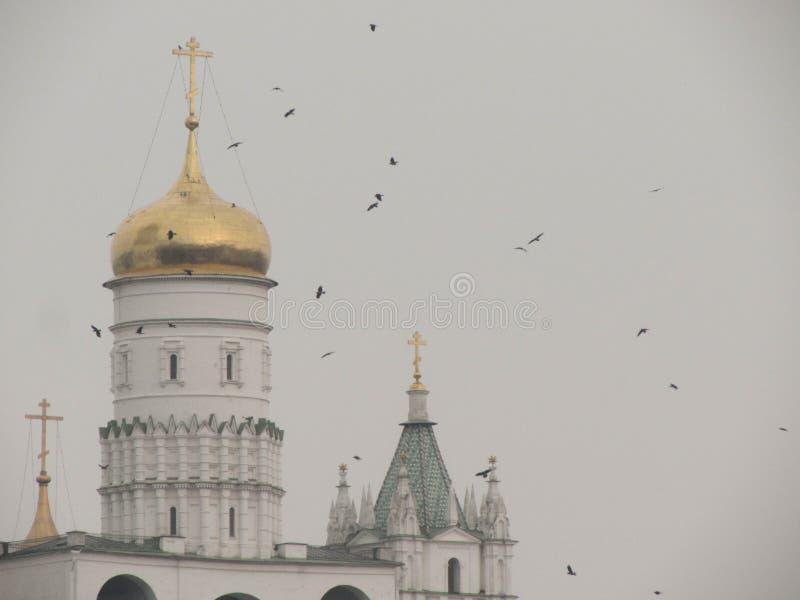 St Basilicumkathedraal in Moskou het Kremlin royalty-vrije stock afbeeldingen