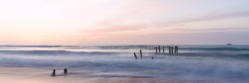 St. Clair Beach in Dunedin, Neuseeland stockbild