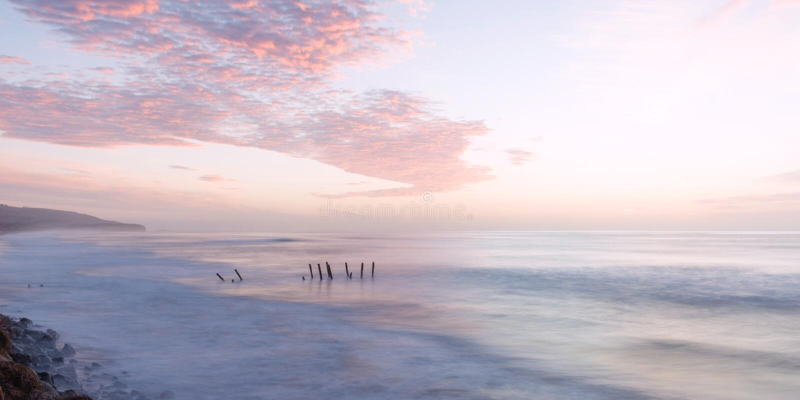 St. Clair Beach in Dunedin, Neuseeland stockbilder