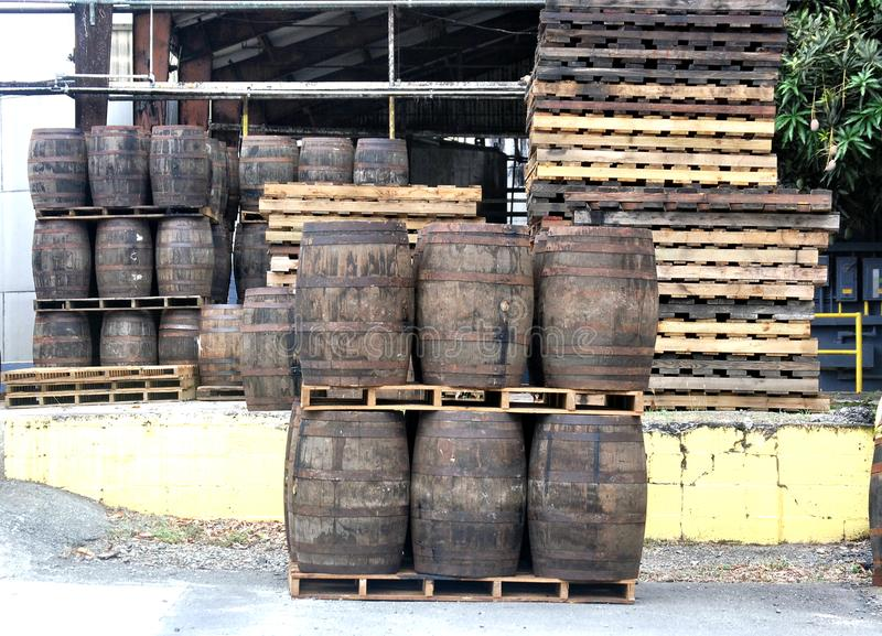 St croix us virgin islands cruzan rum barrels. There are wooden barrels with famous Cruzan rum on its distillery in St Croix US Virgin islands , one of the stock images