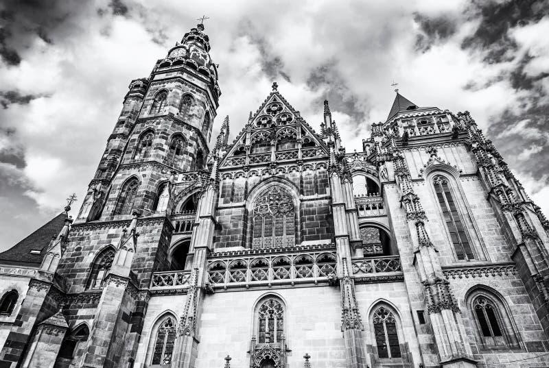 St Elisabeth katedra w Kosice, Sistani, bezbarwny fotografia royalty free