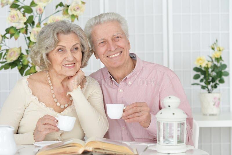 St?ende av den lyckliga h?ga parl?seboken royaltyfri fotografi