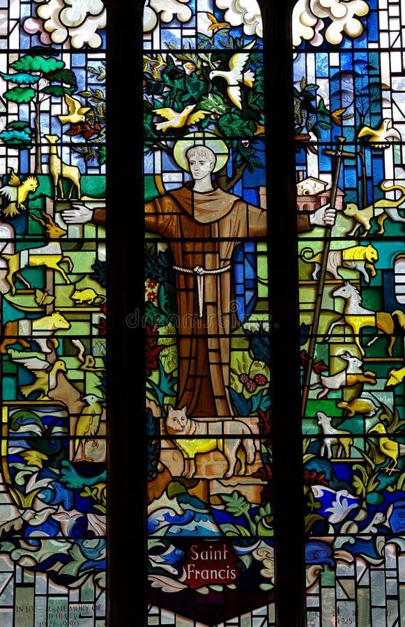 St Francis com os animais no vitral imagens de stock