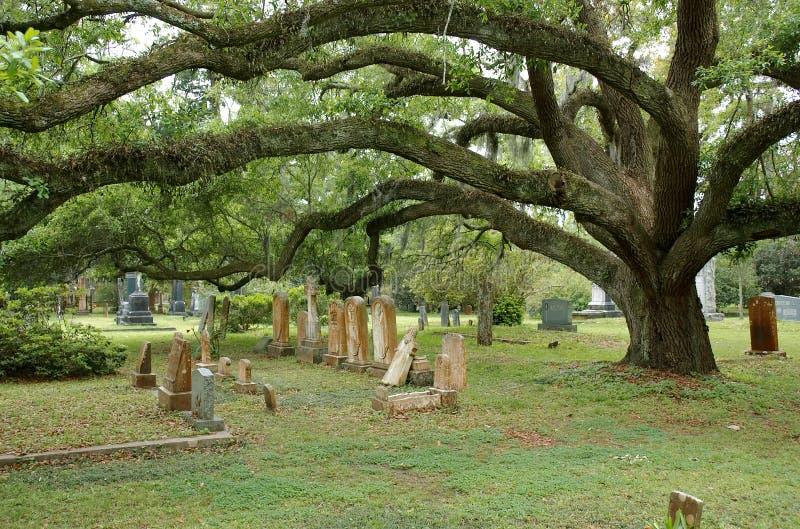 ST FRANCISVILLE, LUISIANA, LOS E.E.U.U. - 2009: Tumbas y robles en el cementerio situado en Grace Episcopal Church imagen de archivo