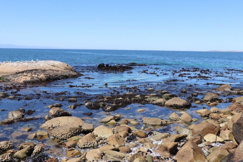 St Helena Bay fotografia de stock royalty free