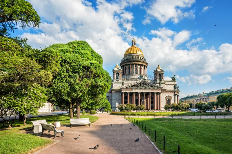 St. Isaac`s Cathedral on a bright sunny morning. St. Isaac`s Cathedral in St. Petersburg on a bright sunny morning and pigeons near benches royalty free stock photo