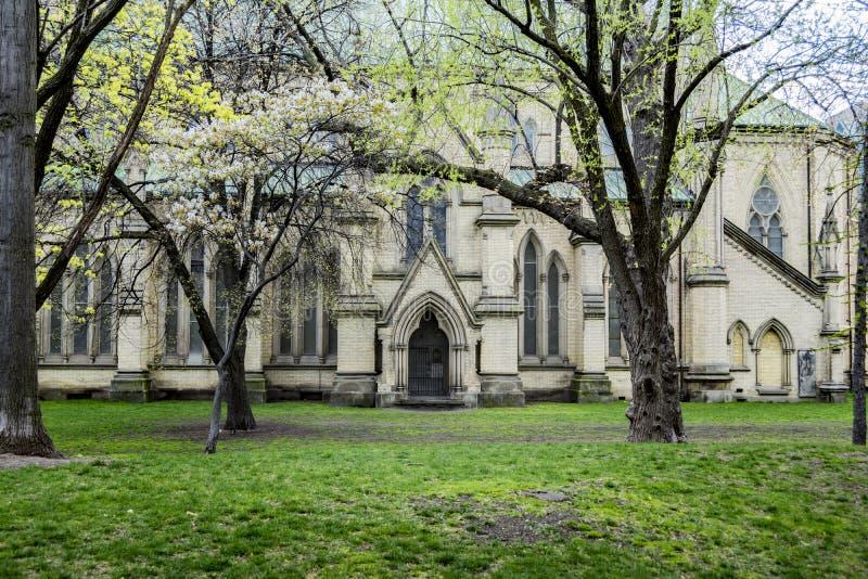 St James kathedraal stock afbeeldingen