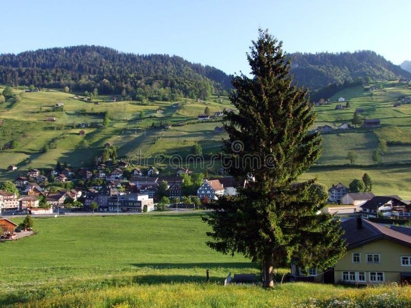 St Johann Alt в регионе Toggenburg и в Thur River Valley стоковая фотография