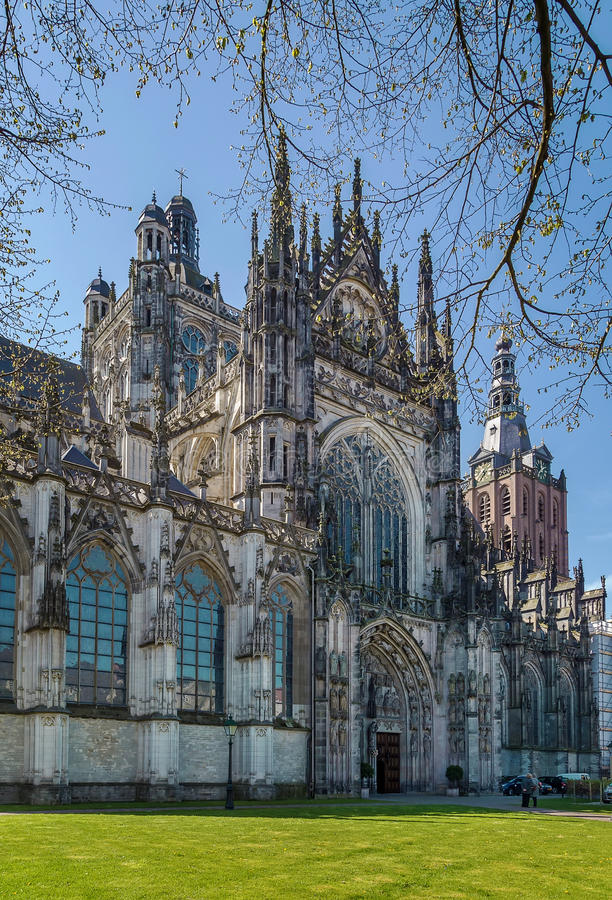 Free St. John S Cathedral, S-Hertogenbosch, Netherlands Royalty Free Stock Photos - 74088848