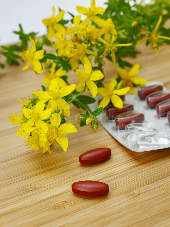 St. John's wort medicine stock photo