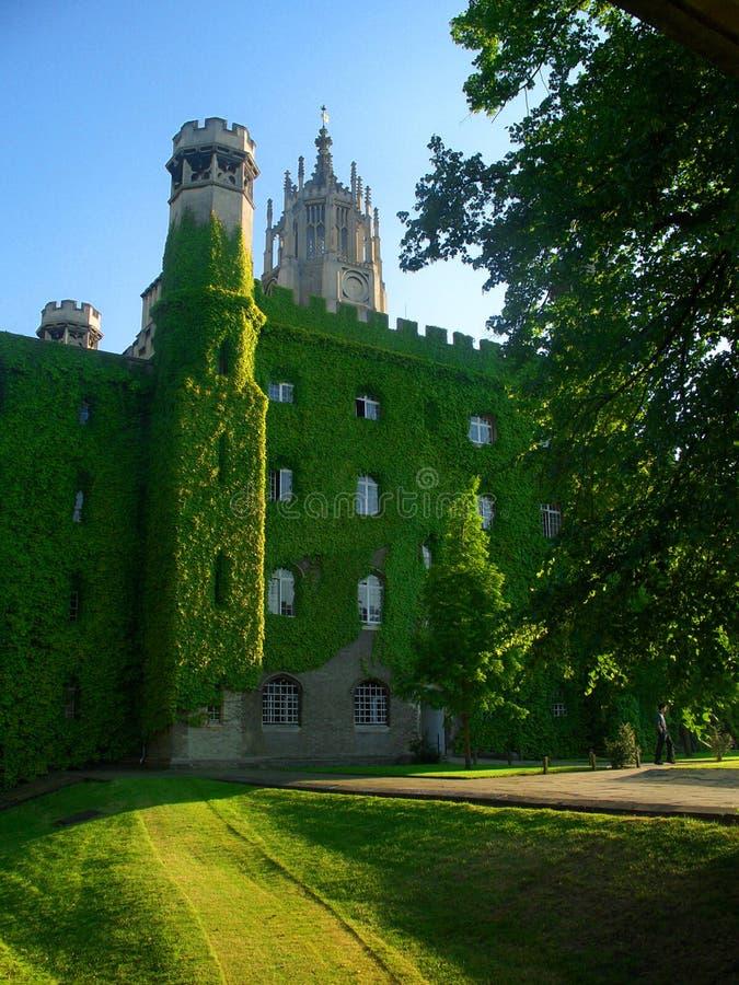 St. John Universiteit, de Universiteit van Cambridge stock foto's