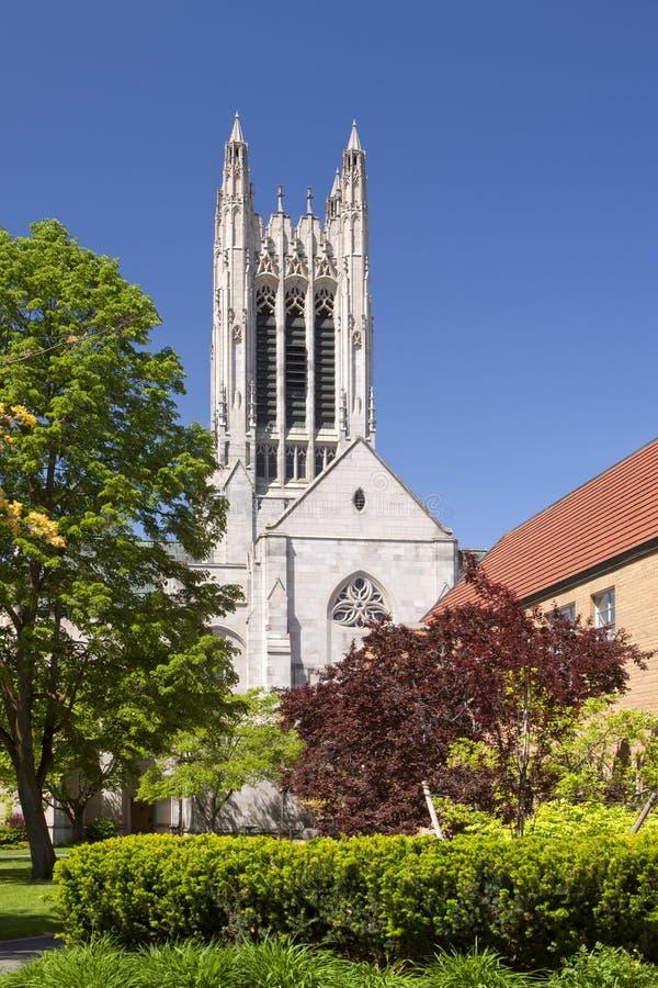 St Johns gotische kathedraal royalty-vrije stock foto's