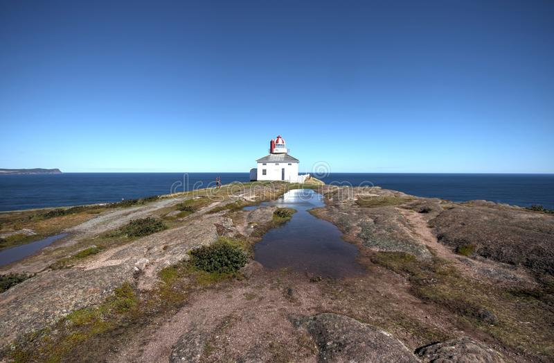 St Johns Newfoundland, Kanada royaltyfri bild