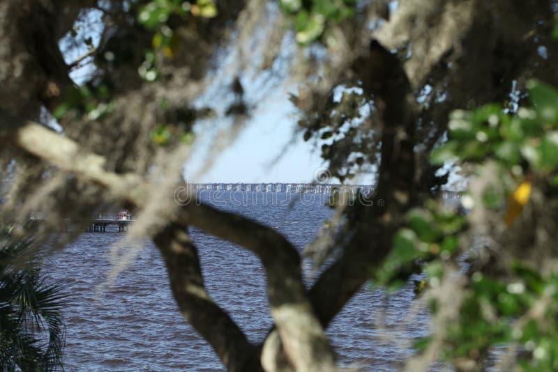 St. Johns River в Флориде стоковое фото rf