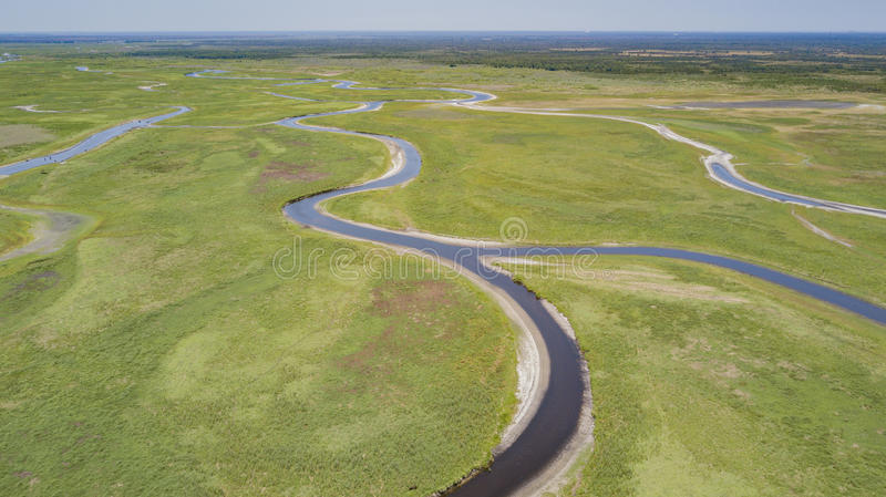 The St Johns River basin in Brevard County Florida. The St Johns River is a very shallow river flowing South to North in Florida. Airboats are the only reliable royalty free stock photo