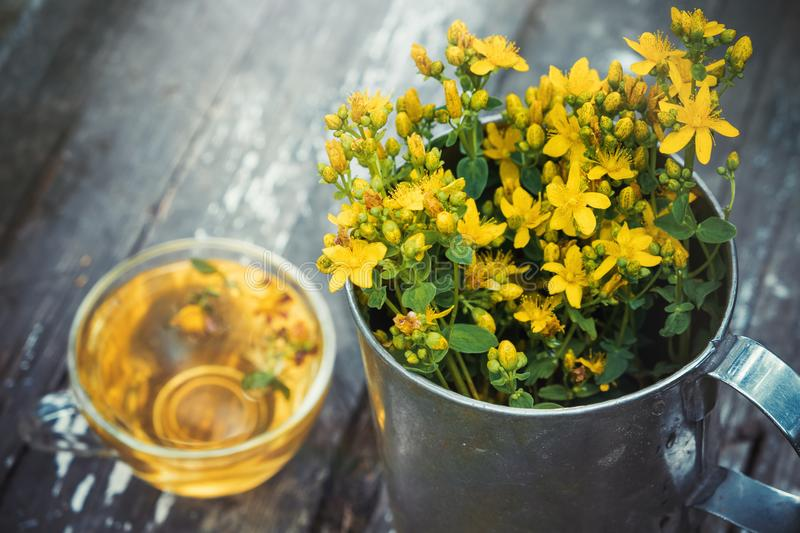 St Johns wort flowers in a large retro mug and Healthy hypericum tea - not in focus. Top view royalty free stock photography