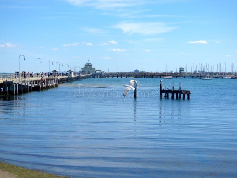 St Kilda pijler royalty-vrije stock fotografie