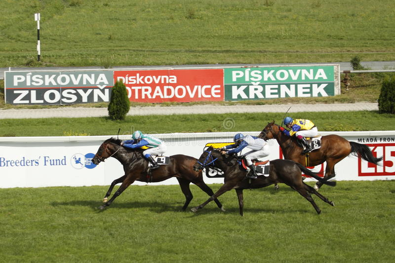 Download St. Leger Horse Racing Finish Editorial Stock Photo - Image: 15816813