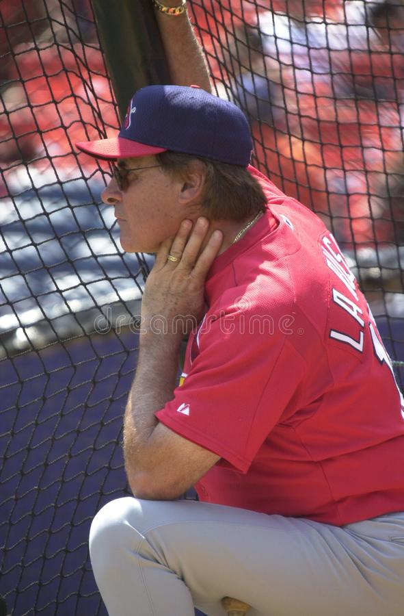 St Louis Cardinals Manager Tony LaRussa photo stock