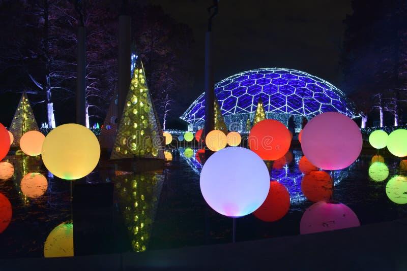 St Louis, Missouri, EUA - 22 de novembro de 2017: Fulgor do jardim no jardim botânico de Missouri imagem de stock