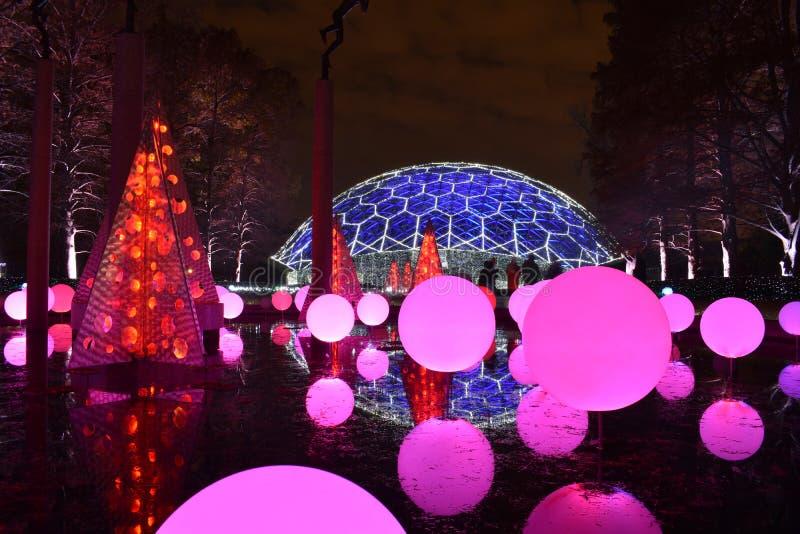 St. Louis, Missouri, los E.E.U.U. - 22 de noviembre de 2017: Jardín botánico de Missouri del resplandor del jardín foto de archivo