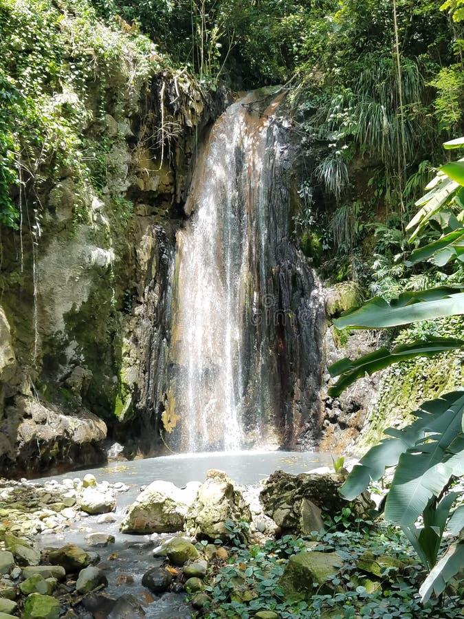 ST lucia& x27; водопады диаманта s на ботаническом саде стоковые изображения