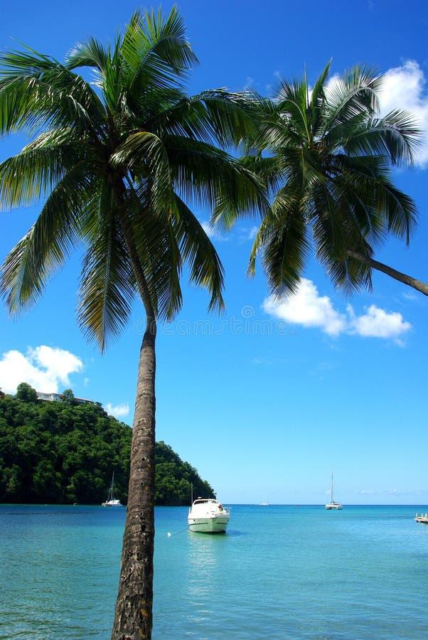 Marigot Bay, St Lucia royalty free stock photos