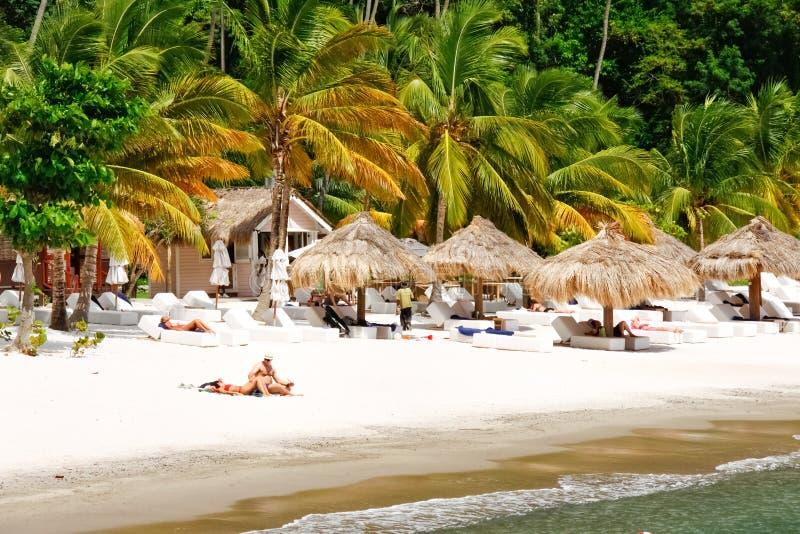 St. Lucia - de Terugtocht van het Strand van de Jaloezie stock afbeelding