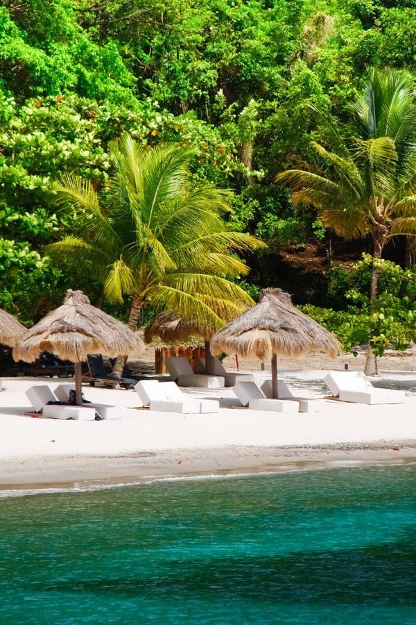 St. Lucia - Luxueuze Tropische Vlucht royalty-vrije stock fotografie