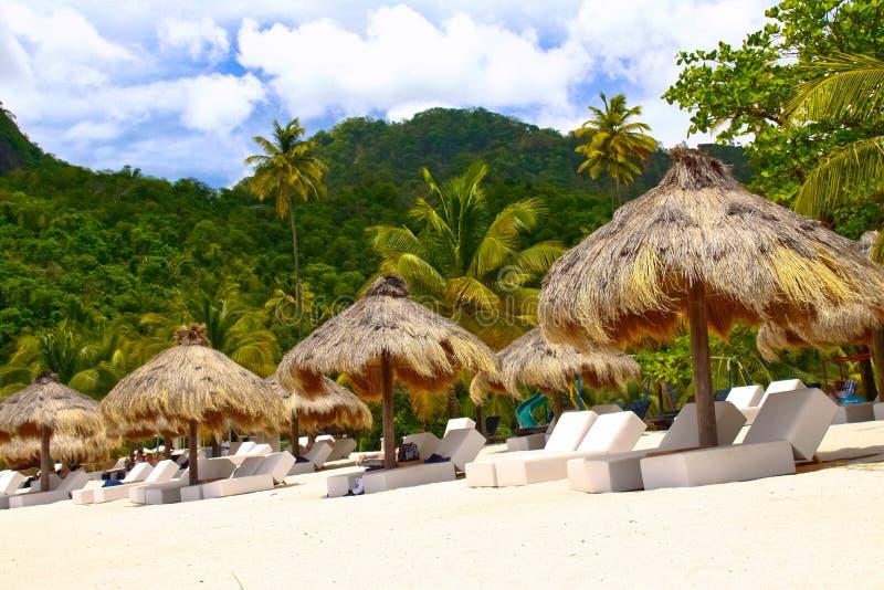 St. Lucia - Uw Tropische Vlucht wacht op? stock foto's