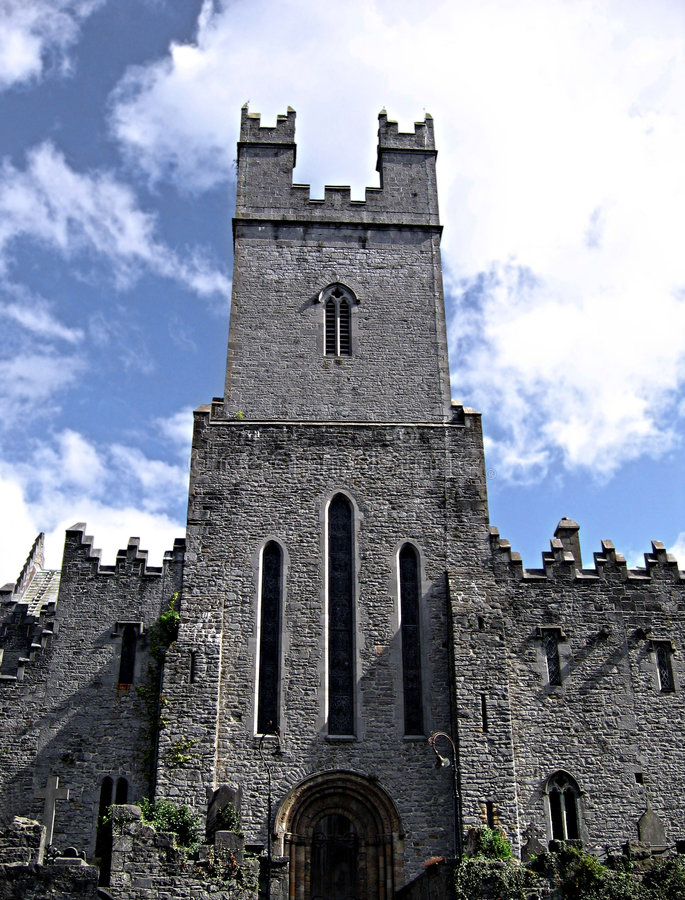 St. Mary's Cathedral, Ireland royalty free stock image