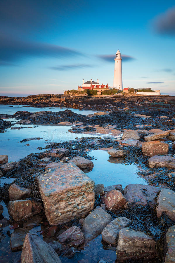 St Mary`s Lighthouse in portrait. St Mary`s Lighthouse on the small rocky St Mary`s Island, just north of Whitley Bay on the North East coast of England. A royalty free stock images